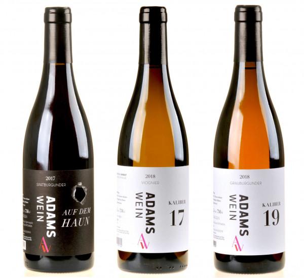 3er-Weinpaket AdamsWein zum vinocentral-Livestream: 3 Gläser mit Simone Adams