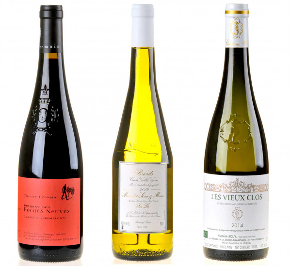 3er-Weinpaket Gegen den Strom zum vinocentral-Livestream: 3 Gläser Loire-Wein