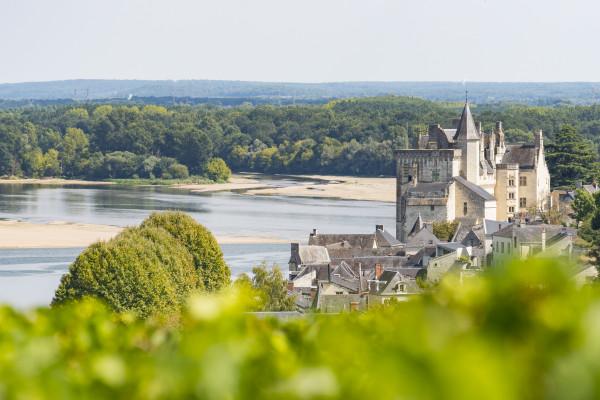 1999_Montsoreau_-_Vue_sur_la_Loire_Stevens_FrC-mont